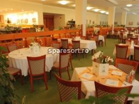 Danubius Health Spa Resort Sovata, spa resort 2