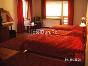 Hotel Cheile Gradistei Moeciu, spa resort 4