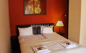 Hotel Villa Vitae Wellness & Spa, spa resort 2