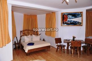 Hotel Castelul de Vis, spa resort 5